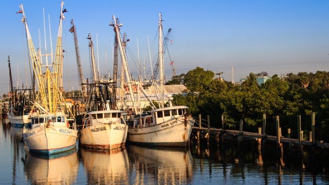 Shrimp Boats 7